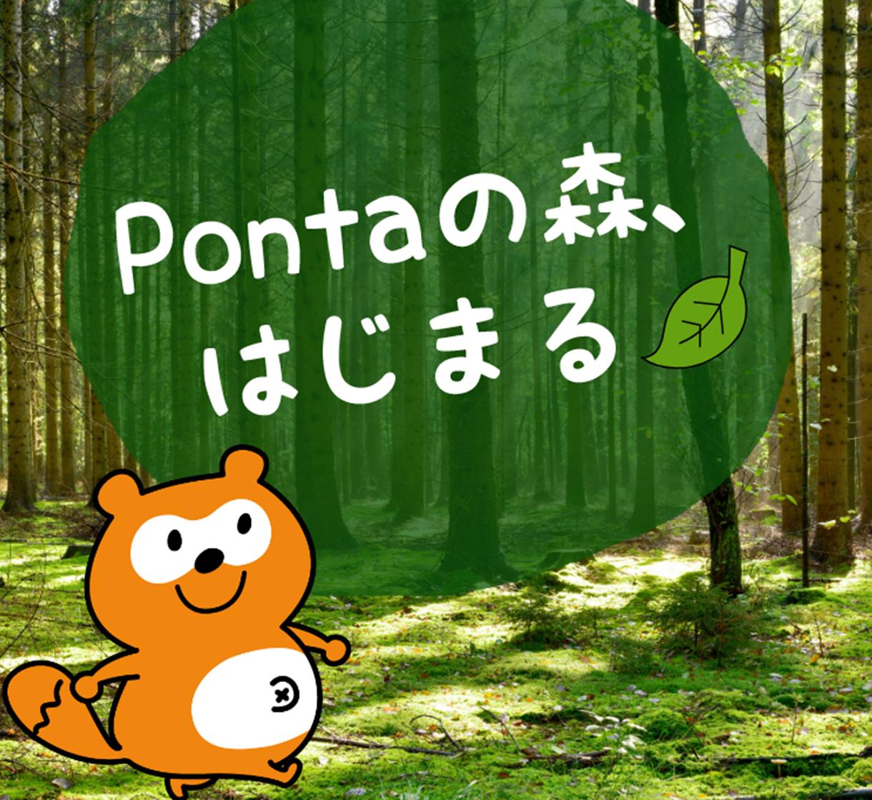 Pontaの森